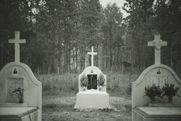 Chinese cemetery Cross Religion Spirituality Cemetery Tombstone Tree Grave No People Place Of Worship Day Graveyard Outdoors Memorial Nature Chtistian After Death Back Write Chinese Dead Along Lonely Scary Art