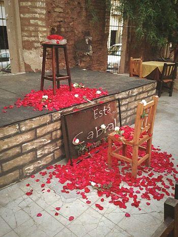 Hermosillo Sonora México Day5 Petalos Rosas Wedding Flowers