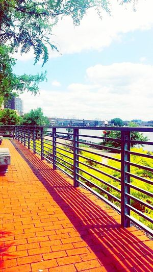 Taking Pictures By The River St. Paul, Mn Hanging Out Summer Views Beautiful Day