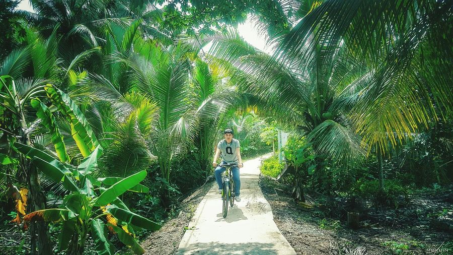 ••• Season in the Sun ••• Hanging Out Taking Photos Go Around Seasons Season In The Sun Relaxing Trainning Photography Trainning Ride A Bicycle Memories ❤ Today's Hot Look Coconut Trees Boy