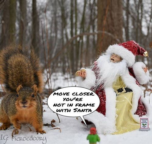 Poor photographer elf. No one understand his pain. Funwiththesquirrels Luckywiththeanimals LOTR Gollum Squirrelsofinstagram Squirrel Snow Christmas Neca Necatoys Tga_happynewyear Tga_best_of_2015