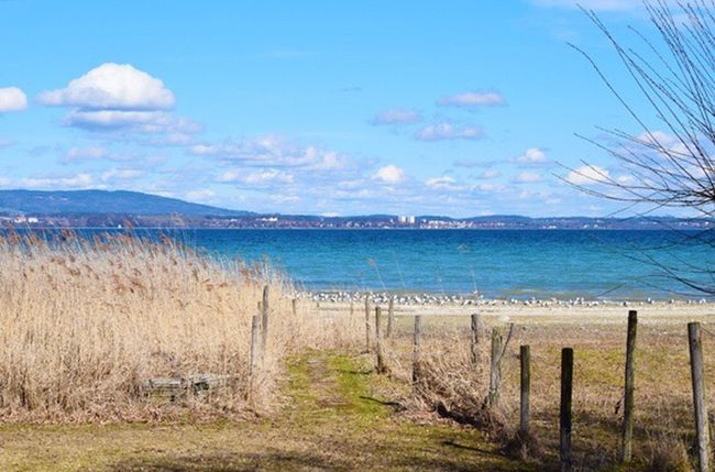 Sea Water Scenics Day Outdoors Grass Tranquility Sky Nature Bodenseebilder Bodenseeufer Wintertime Tranquil Scene Beauty In Nature Mountain Beach Landscape Horizon Over Water