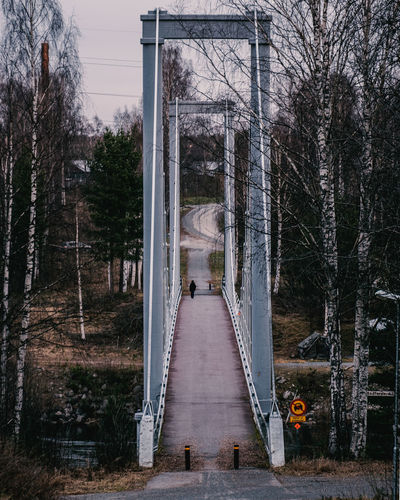 Bridge amidst trees in forest