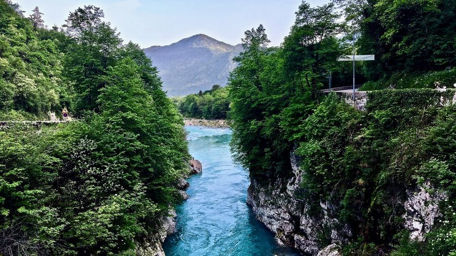Caporetto Slovenia Beauty In Nature Day Flowing Flowing Water Forest Green Color Growth Land Mountain Nature No People Non-urban Scene Outdoors Plant River Scenics - Nature Sky Tranquil Scene Tranquility Tree Turquoise Colored Water
