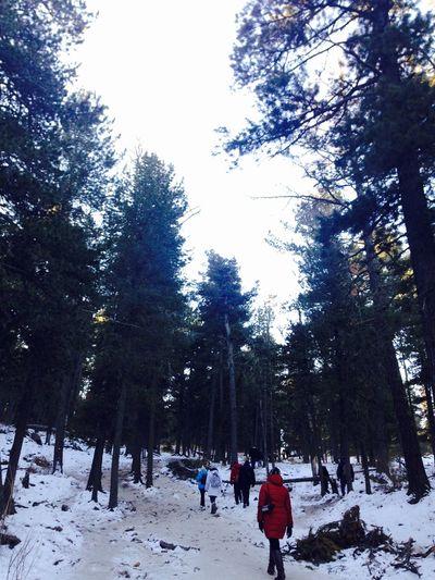 Hiking Bogdkhan Uul Mongolia Winter