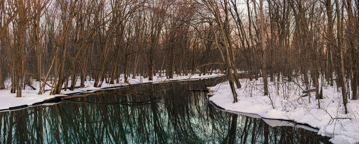 Winter wonderland https://www.youtube.com/watch?v=OWwqSj_VULQ 50-500mm Frozen Frozen Lake Nature Scenic Tree Water Reflections Winter Winterscapes Wintertime Cold Cold Temperature Idyllic Lake Landscape Nature_collection Scenics Snow Sony A68 Stiched Water Reflection Winter Trees Winter Wonderland Winter_collection Winterwonderland