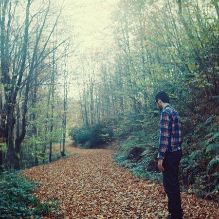 Rüyamda iki yol çikti önüme ben hiç çiğnenmemiş olani seçtim. Analog Colours Pentaconsix Forest
