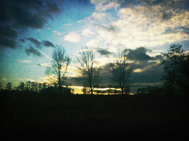 pretty skies ☀☁ Sun Light