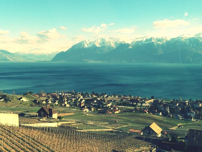 Marvelous Lavaux Switzerland Lavaux Lac Léman Evian On My Travels EyeEm Nature Lover View From The Window... On The Road
