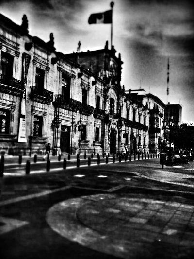 Palacio de gobierno B&W Portrait