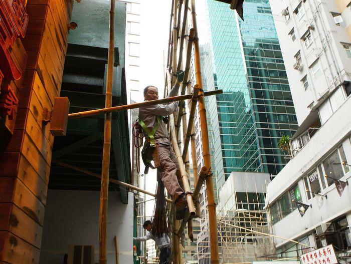 Bamboo Builder