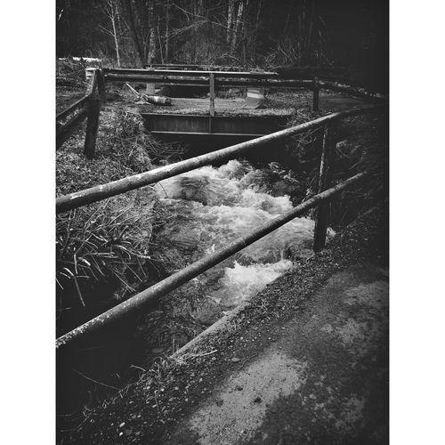 Shandaken New York Catskill Mountains Pine Hill NY two bridges Monochrome