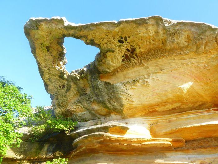 Sydney Sydney, Australia Rock Rocks Rock Formation Strange Rockformations