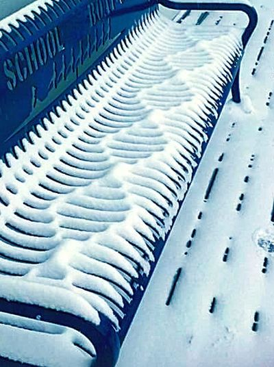 Snow Double Helix Dna Bench Taking Photos Check This Out