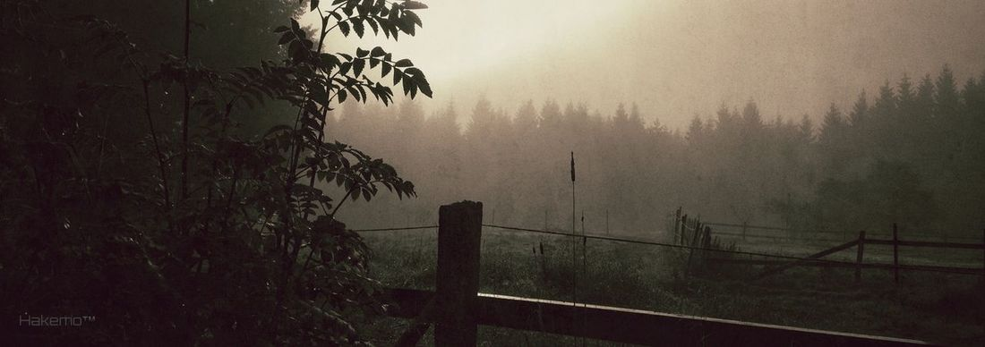 """Calm"" AMPt_community Nature_collection EyeEm Best Shots Eye4photography"
