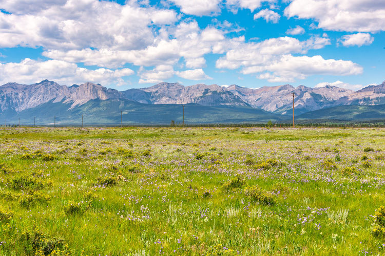 Mountain Scenics - Nature Grass Landscape Environment Beauty In Nature Sky Cloud - Sky Tranquil Scene Plant Mountain Range Tranquility Nature Field Land No People Green Color Day Non-urban Scene Remote Outdoors Mountain Peak
