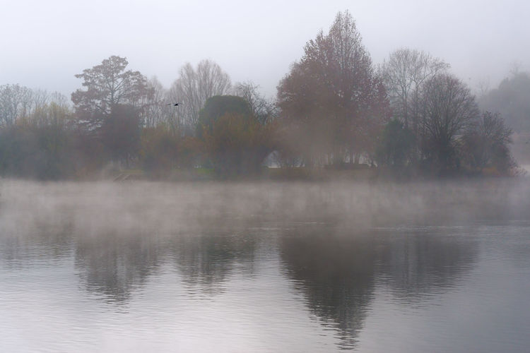 Autumn Beauty In Nature Day Fog Hazy  Idyllic Lake Mist Nature No People Outdoors Reflection Scenics Tranquil Scene Tranquility Tree Water The Week On EyeEm