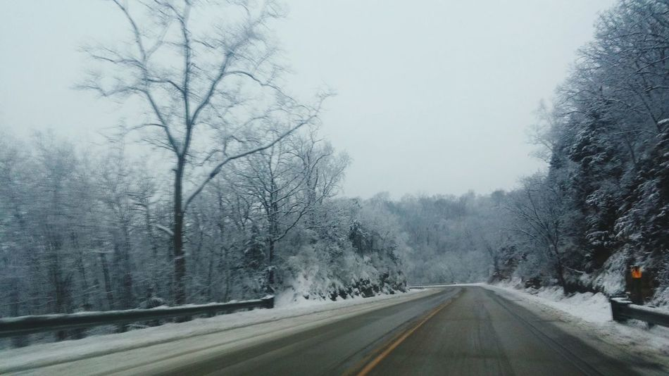 Road Tree Fog Nature The Way Forward Winter Transportation Cold Temperature No People Outdoors Snow Day Beauty In Nature Snowing Sky Winding Road Winona, MN. Fine Art Photography