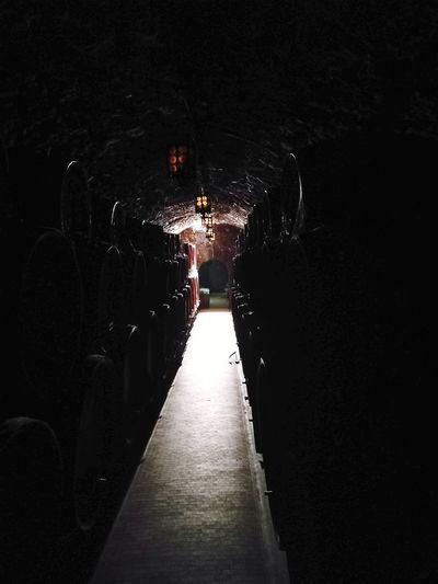 Wine Cellar Barrique Winery Wine Cask Wine Cellar
