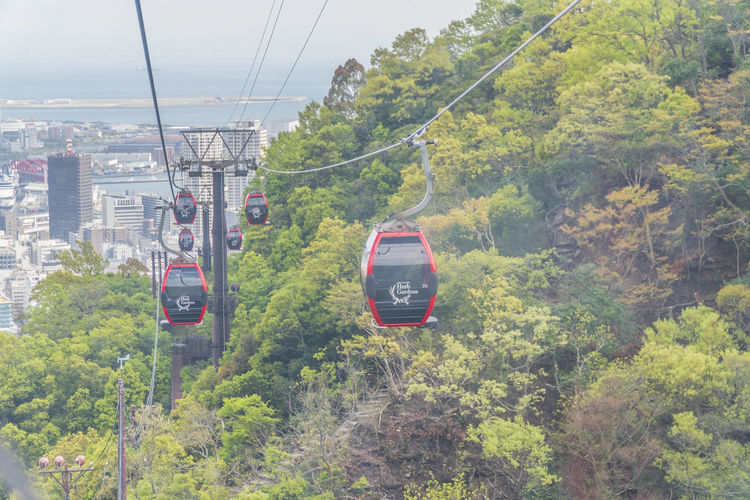 Ropeway Transportation Mode Of Transportation Plant Tree Cable Day Green Color Nature Overhead Cable Car Travel Cable Car Land Vehicle Rail Transportation Public Transportation Growth Train Foliage Lush Foliage on the move Land No People Outdoors Track