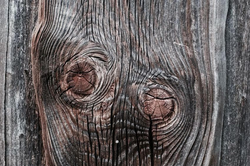 Knotholes Wood - Material Backgrounds Textured  Wood Full Frame Pattern Wood - Material Backgrounds Textured  Wood Full Frame Pattern Wood Grain Brown Timber Old Rough Knotted Wood