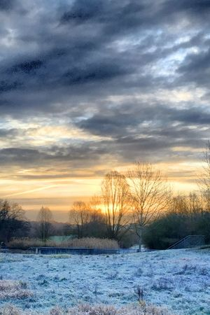 Frais Snow Cold Temperature Sky Winter Cloud - Sky Sunset Plant Tranquil Scene Tranquility No People