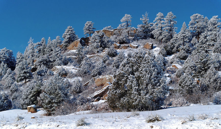 Snowcapped Outdoors Beauty In Nature Tranquil Scene Snow Tranquility Nature Day No People Close-up Sky