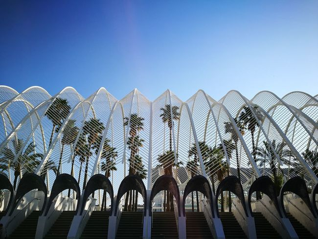 Oceanografic Valencia Low Angle View Architecture Nofilter Clear Sky Travel Destinations Paradise Nature The Architect - 2018 EyeEm Awards