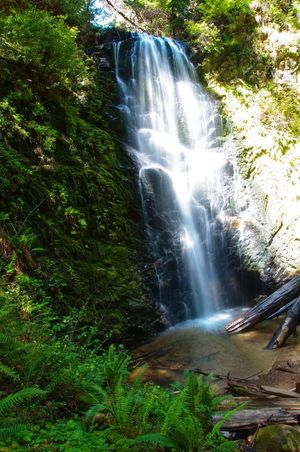 One of 3 waterfalls encountered when hiking the trails in Big Basin Redwoods Park.