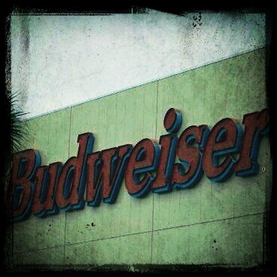 Beer Enjoying Life Bud
