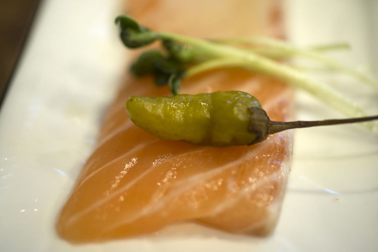 Close-up of salmon in plate
