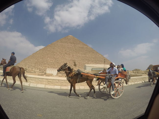 Ancient Ancient Aliens Ancient Civilization Bucketlist Cairo Camel Desert Donkey Egyptian Giza Horse Horse Cart Marvel Pyramid Pyramids At Giza Riding Sky Tourism Tourist Tourist Destination Transportation Travel Travel Destinations Wonder Of The World Working Animal Miles Away Done That. Moving Around Rome