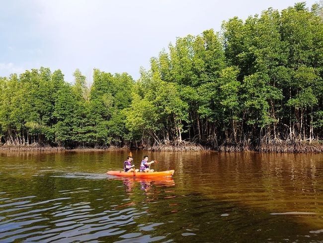 Cayaking Twin Tree Water Togetherness Men Lake Sitting Sky Kayak