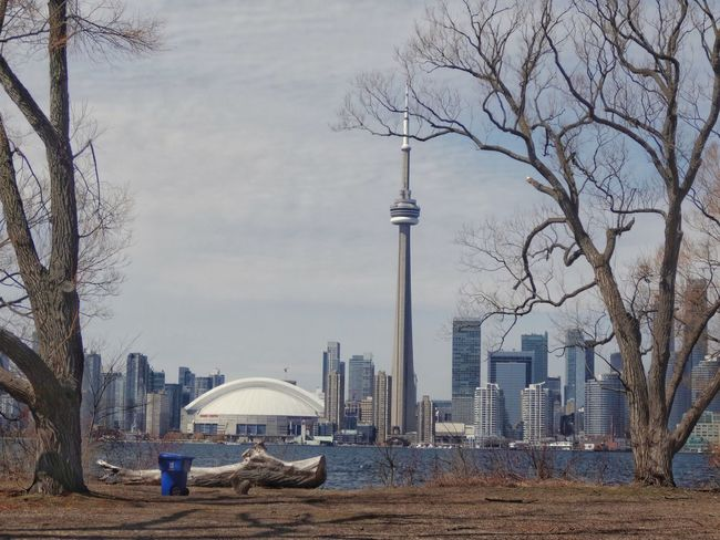 Toronto Island Park. Built Structure Tall - High City Architecture Building Exterior Sky Bare Tree Tree Tower Outdoors Travel Destinations Television Tower Cloud - Sky Day Skyscraper Modern No People Adapted To The City The Architect - 2017 EyeEm Awards The Great Outdoors - 2017 EyeEm Awards Neighborhood Map