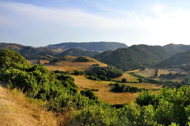 Hills of