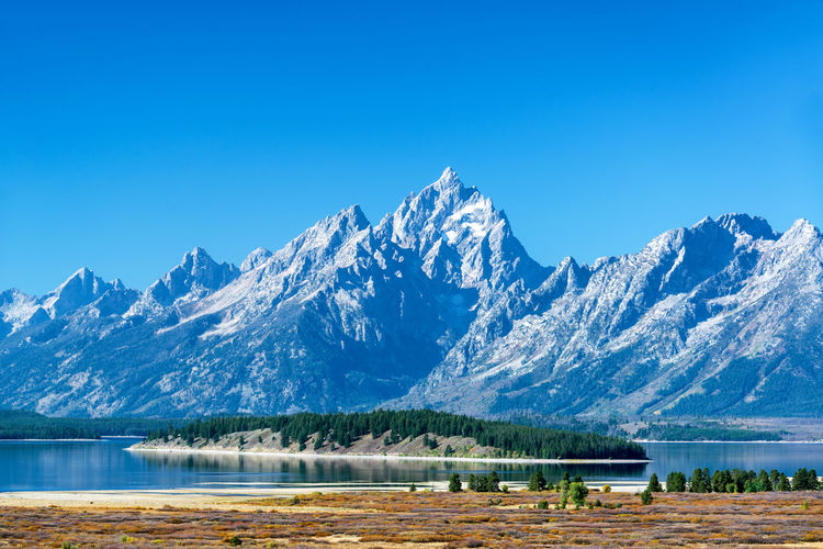Teton Range with a tree covered island in the middle of Jackson Lake in Grand Teton National Park Alpine Bear Jackson Montana National Park Parks Scenic Travel Tundra USA Wanderlust Wyoming Beartooth Destination Forest Grandtetonnationalpark Higway Hole Landscape Lodge Mountain Peaks Range Valley Wilderness