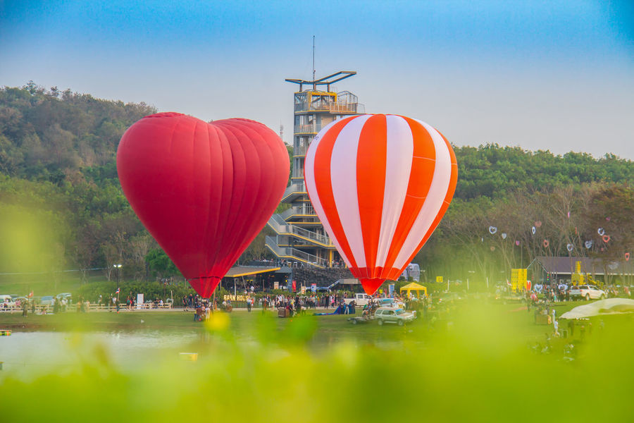 Balloon Festival, Singha Park International Balloon Fiesta 2017,Chiang Rai, Thailand Thailand Adventure Ballooning Festival Balloons🎈 Chiangrai Clear Sky Crowd Day Flying Hot Air Balloon Large Group Of People Outdoors People Sky Transportation