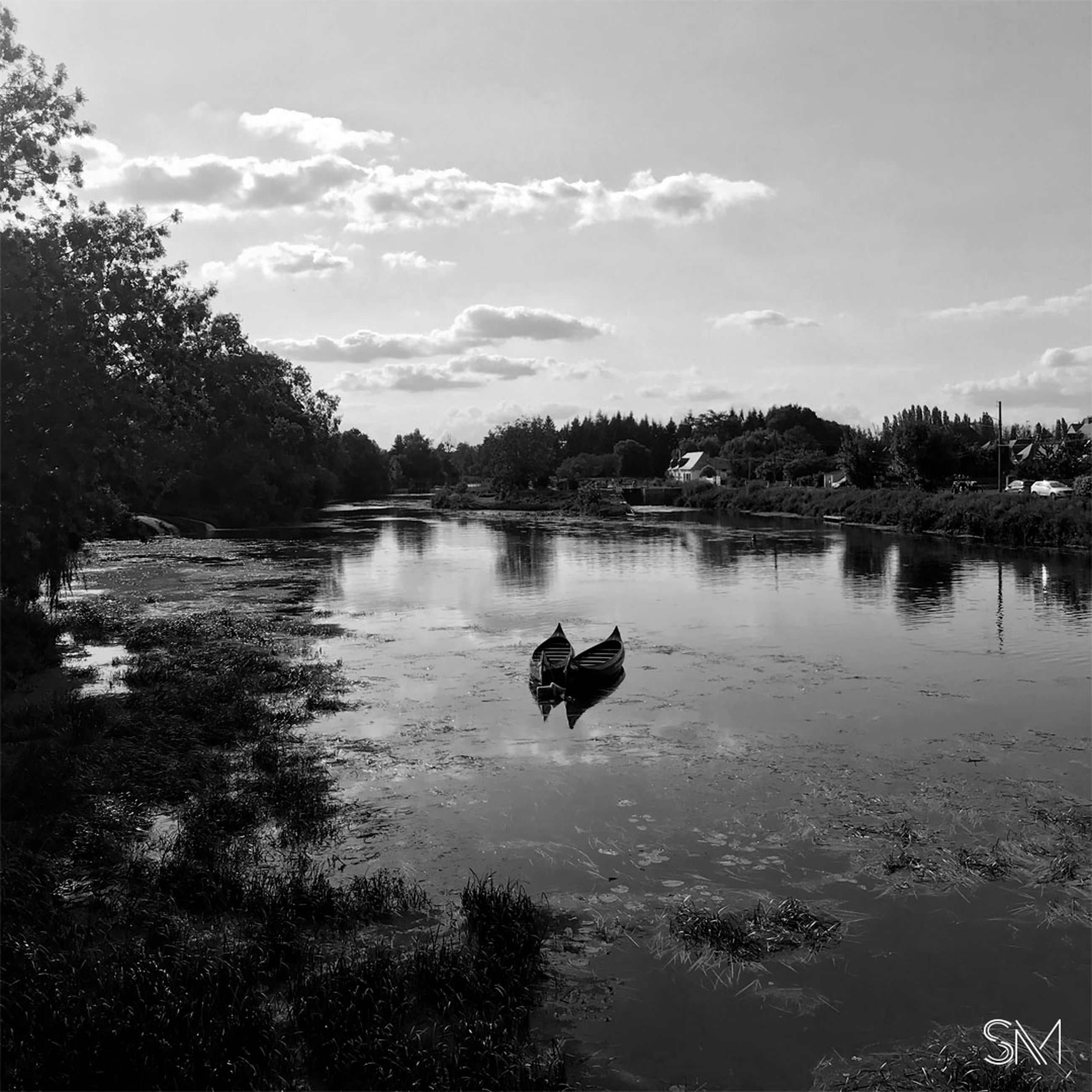 water, tree, reflection, lake, sky, black and white, nature, plant, monochrome, monochrome photography, animal themes, animal, one animal, beauty in nature, cloud, tranquility, scenics - nature, day, one person, tranquil scene, outdoors, mammal, domestic animals, canine, pet, animal wildlife, swimming, wildlife, non-urban scene, dog, silhouette, black, bird, darkness, leisure activity, men, morning