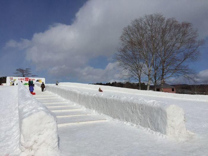 Winter in Iwate pref. 小岩井農場 Shades Of Winter Tadaa Community Traveling Travel Children Playing Japanese Culture Winter Japan Iwate Koiwaifarm Snow