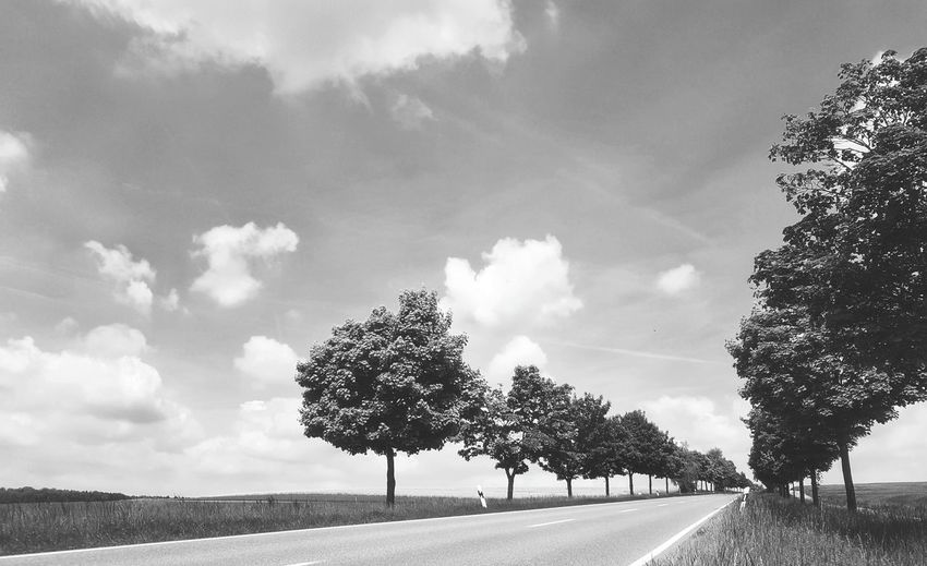 Summer on the country site Tree Cloud - Sky Road The Way Forward Sky Day Nature Beauty In Nature Landscape Scenics Rural Scene Outdoors Blue No People Deciduous Tree Nature Beauty In Nature Tranquil Scene The Great Outdoors - 2017 EyeEm Awards Summer Capture The Moment Oberjessingen