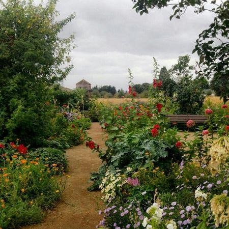 Garden Vancouver Washington