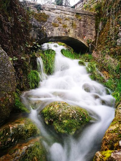 Water Waterfall Tree Forest Motion Long Exposure Moss River Rock - Object Landscape Rapid Flowing Water Stream - Flowing Water Falling Water Running Water Natural Landmark Flowing Power In Nature Stream Rock Formation