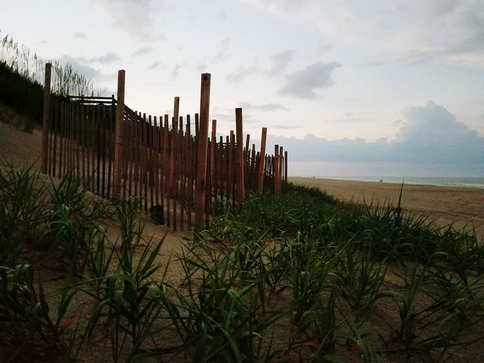 Outdoors Growth No People Sky Sunset Nature Day Beach Beach Photography Beach Life Wood Wood Fence Grassy Evening