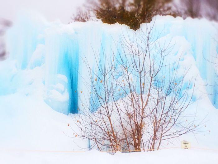 Ice castle IPS2016Winter