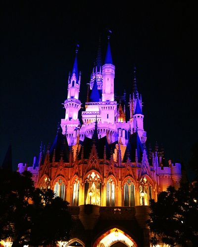 If you can dream it, you can do it.- Walt Disney Cinderella Castle More Beautiful At Night Tokyo Disneyland