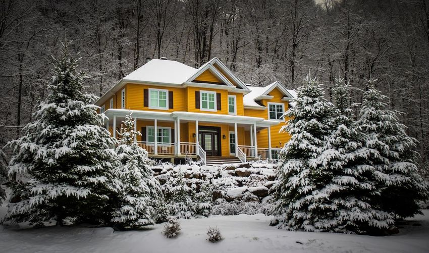 House by trees during winter