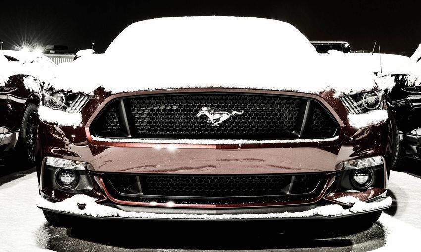 🇺🇸 Mustang American Muscle Mustang GT Ford Ford Mustang Fordracing Fordperformance