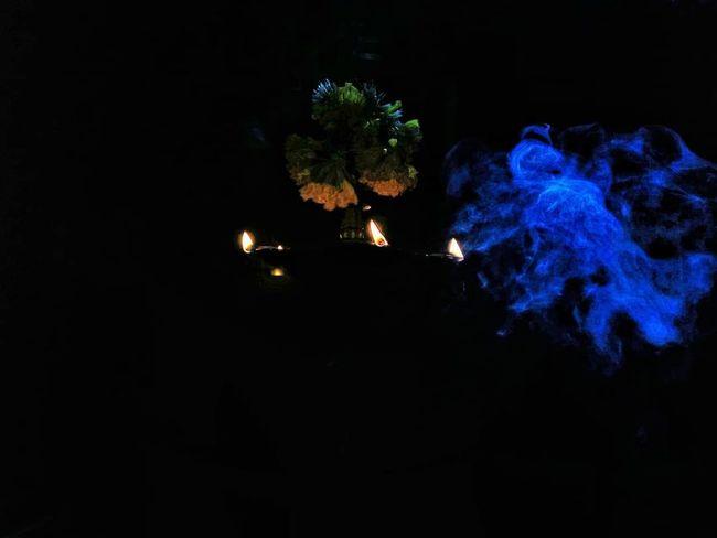 Tree Astronomy Blue Illuminated Celebration Sky Close-up Capture Tomorrow