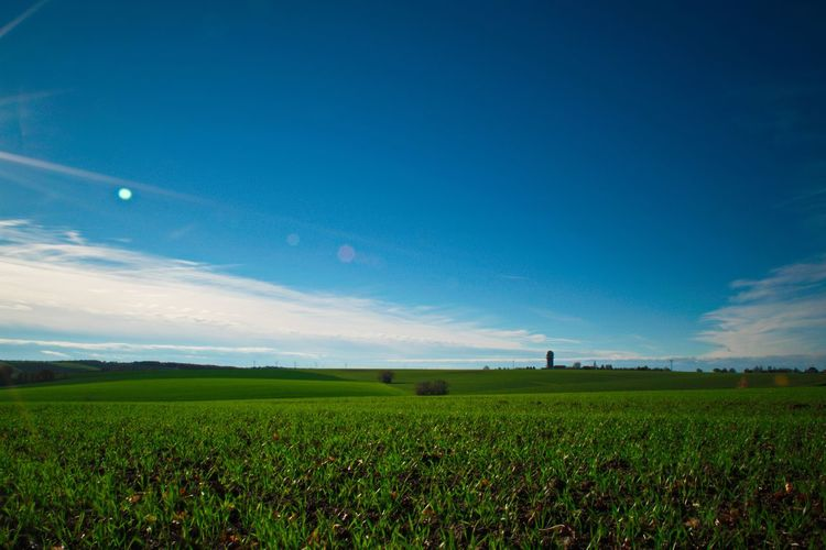 Sky Field Blue Growth Rural Scene Agriculture Landscape Nature Grass Night Outdoors Star - Space No People Cloud - Sky Sunlight Beauty In Nature Germany Autumn Colors Thuringia Autumn Nature Day Reflection Sunbeam Altenburg