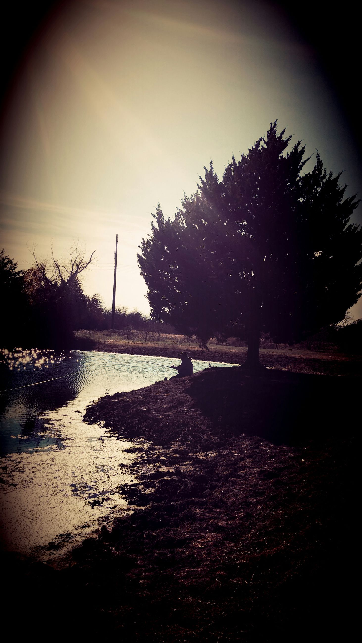 water, tranquility, tree, tranquil scene, silhouette, sky, scenics, nature, beauty in nature, lake, bare tree, river, reflection, sea, idyllic, outdoors, branch, non-urban scene, no people, calm